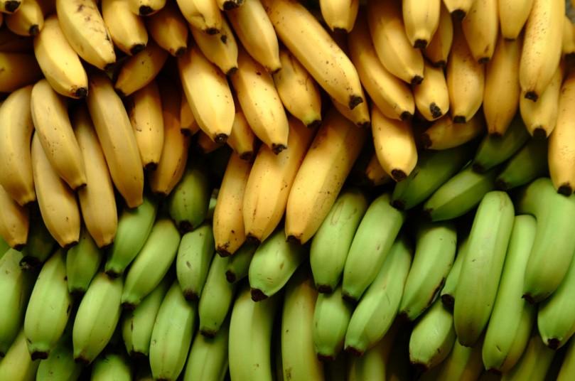 Bananas_EarthTalk