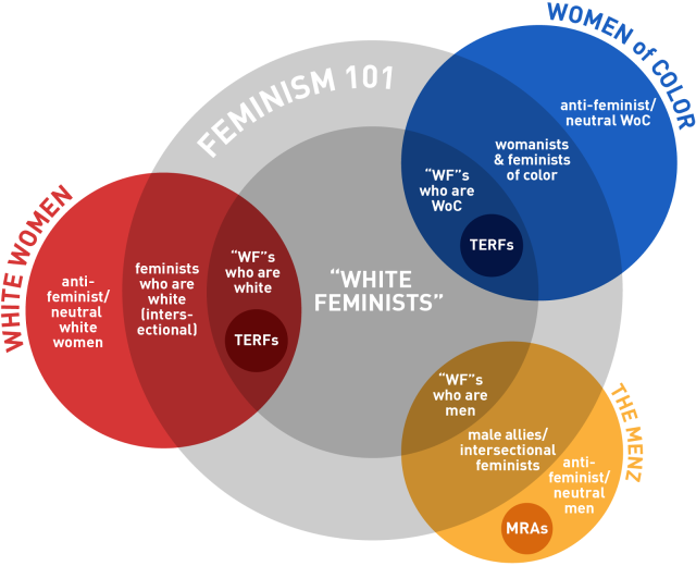 ninjacates_guide_to_white_feminism_FINAL_A-01